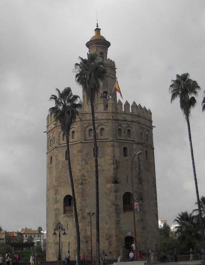 Torre Oro-13