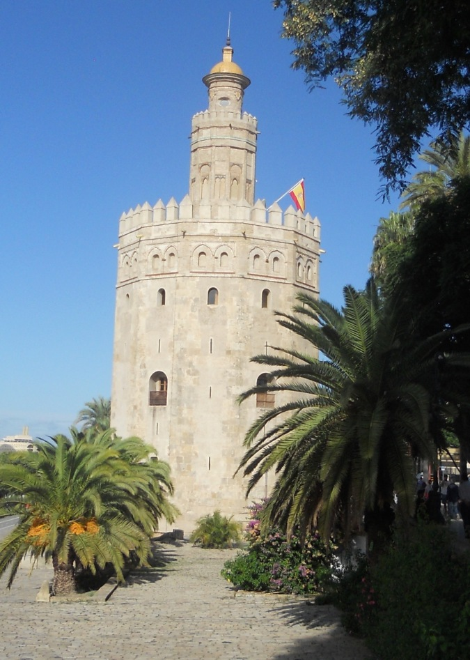 Torre Oro-201